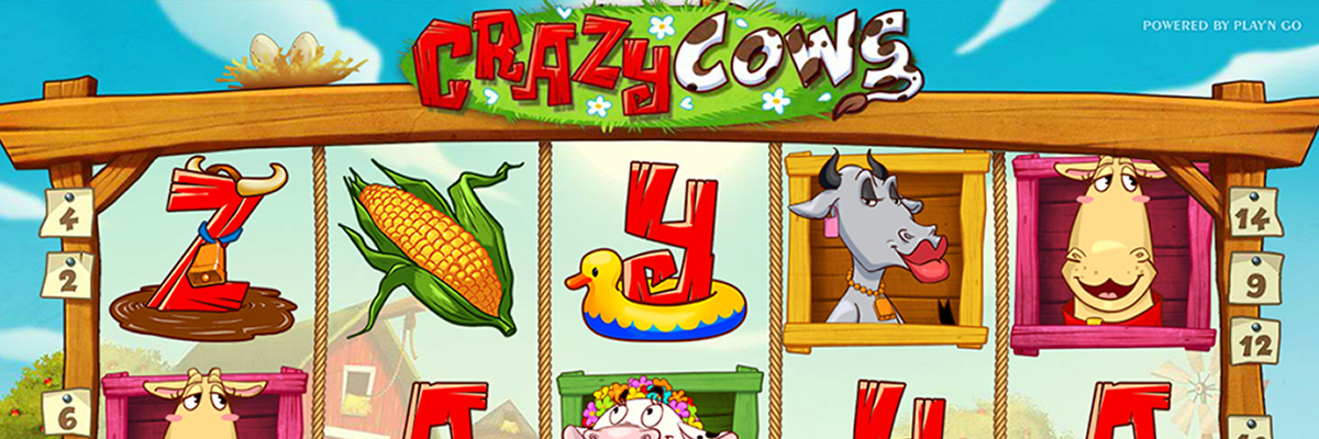 /global/images/backgrounds/games/play-n-go/crazy-cows_background_1200x400.jpg
