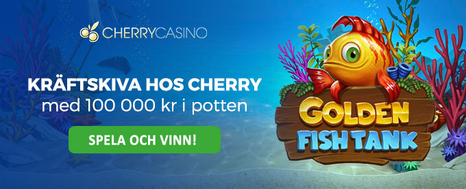 Cherry Casino header